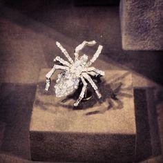 Fantasy engagement ring from Chaumet! #vremenagoda #chaumet #beautiful #loveit #luxury #sparkle #instadaily #jewelry - @vremena_goda- #webstagram