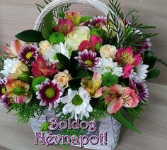 Happy Brithday, Floral Wreath, Wreaths, Plants, Home Decor, Flowers, Happy Birthday, Floral Crown, Decoration Home