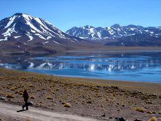 Pictures From Chile | DIAS / 7 NOCHES: TOUR NORTE DE CHILE Y ALTIPLANO CHILENO.