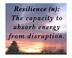 resilience: the capacity to absorb energy from disruption