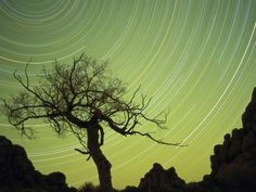 Star trails, Mongolia
