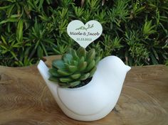 RESERVED for Karen, 70 Succulent Bird Favors and Favor Tags via Etsy