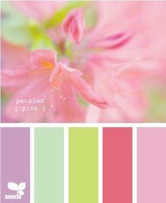 Colour. #shadesoffloralpaintcolours