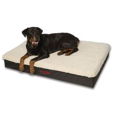 Big dog beds need to be not just roomy, but sturdy and durable too…. and that's exactly what you'll find here 🙂 Of course when your big 'un is still a puppy, finding a bed [. Big Dog Beds, Dog Beds For Small Dogs, Cool Dog Beds, Large Dogs, Best Big Dogs, Giant Dogs, Dog Houses, Rottweiler, Doge
