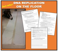 Lab report rubric physics google search physics pictures dna replication on the floor best seller fandeluxe Choice Image