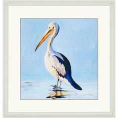 "Paragon Pelican by Bombosse Waterfront Art - 35"" x 35"" - 1536"