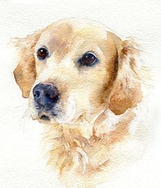 Traditional watercolor painting - Tilly and Blue International Watercolor Portraits, Watercolor Paintings, Watercolor Trees, Watercolor Artists, Watercolor Landscape, Abstract Paintings, Painting Art, Art Drawings Sketches, Animal Drawings