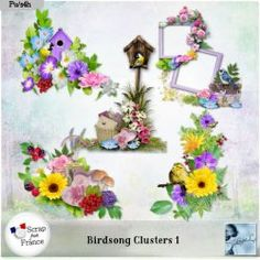 Birdsong Clusters 1 (PU) by Louise
