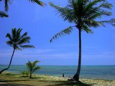 Espelho, espelho meu… Praia do Espelhom na Bahia. #jujunatrip #banhia #beach #summer #brasil #travel #viagem #relax
