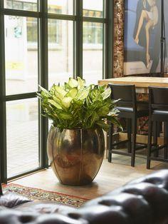 Hippe woonaccessoires online kopen bij Wants and Needs - Wants & Needs Decor, Pot, Sweet Home, Glass Vase, Meeting Room, House Plants, Mood Board, Home Decor, Vase