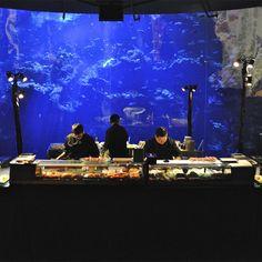Photo of sushi bar in Steinhart Aquarium: © Taste Catering