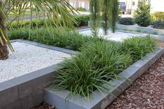 Best Plants For A Drought Tolerant Garden - Useful Garden Ideas and Tips Contemporary Garden Design, Modern Landscape Design, Modern Landscaping, Front Yard Landscaping, Landscaping Ideas, Back Gardens, Outdoor Gardens, Drought Tolerant Garden, Garden Architecture