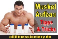 Muskelaufbaupräparate Welche Supplemente sind leistungssteigernd? Welche Muskelaufbaupräparate sind ideal? Warum sind Proteine beste Supplemente für Masse?