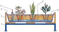 Hydroponické pestovanie rastlín   Urob si sám