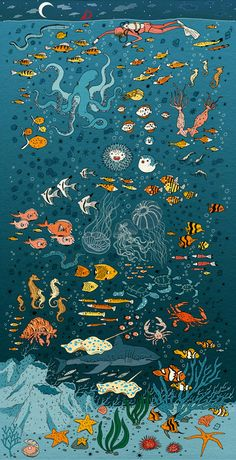 coldraresteaksandwich:  Undersea, Vikki Chu