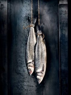 Dark Food Photography, Still Life Photography, Photo Fruit, Aura Photo, Printable Images, Tableau Pop Art, Dead Fish, Still Life Photos, Fish Art