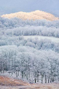 Landscape Photography Blue Ridge Mountains Winter - 12x18 Fine art print - Max Patch, Appalachian Trail, Winter Sunrise, Illumination via Etsy
