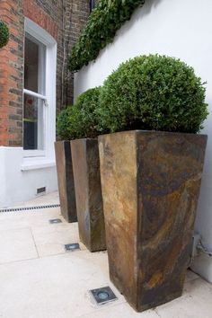 Contemporary Modern Garden Design in West London