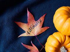 Ambiance automnale et mini-citrouilles    #lettrautomne #citrouille #pumkin #automne #autumn #leaves #calligraphy #calligraphie #calligraphyaddict #lettering #gold #doré Pumpkin, Lettering, Vegetables, Instagram Posts, Inspiration, Food, Mini Pumpkins, Calligraphy, Objects