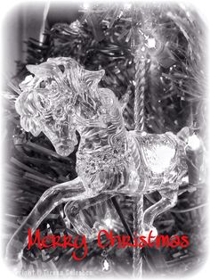 Photos from my own Christmas decorations, made into holiday cards.