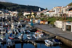 Would love to go to Portugal with my grandmother sometime