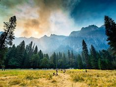 Photo of the Day: From a meadow in Yosemite National Park, #YourShot member…