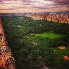 Central Park Green from the Sky