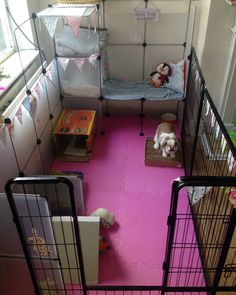 Indoor rabbit cage/enclosure