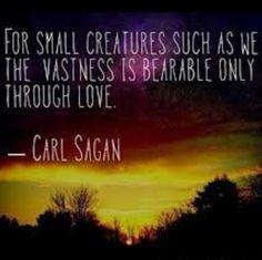 Delightful Carl Sagan #quote #love