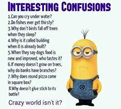 Minion Humour, Funny Minion Memes, Minions Quotes, Funny Texts, Funny Humor, Memes Humor, Minions Fans, Evil Minions, Funny Food