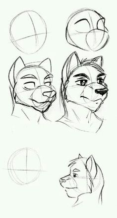 How to draw Furry