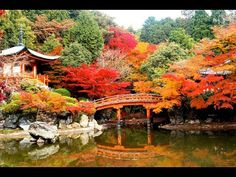 10 Best Places To Visit In Asia - WATCH VIDEO HERE -> http://singaporeonlinetop.info/travel/10-best-places-to-visit-in-asia/    10 Best Places To Visit In Asia ( For more people travel is their hobby. People wants to tavels best places in the world. There are many beautiful places in this world. So many people had already explored top 10 beautiful places in the world. Explore 10 presents top 10 best places to visit in...