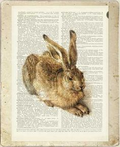 rabbit VI dictionary page print by FauxKiss on Etsy