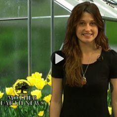 DIY Seed Starting Kits (Video) - Organic Gardening - MOTHER EARTH NEWS