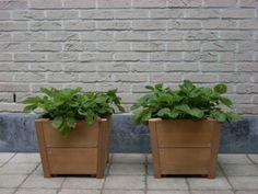 Plantenbakken, boombakken, bloembakken, haagbakken in hardhout (verkrijgbaar op maat)