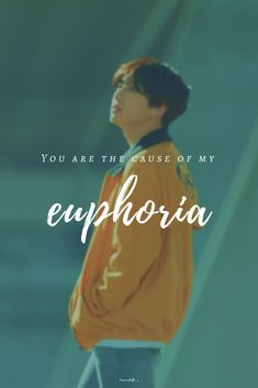 #bts #euphoria #jungkook #wallpaper #lyrics #quote #loveyourself