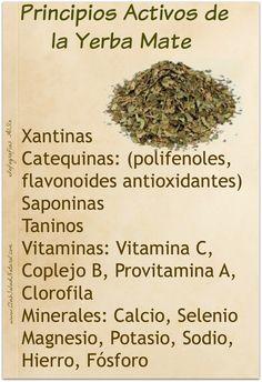 Beneficios y Curiosidades de la Yerba Mate – Club Salud Natural Yerba Mate Tea, Salud Natural, Tea Benefits, Tea Art, Keeping Healthy, Loose Leaf Tea, How To Dry Basil, Natural Remedies, Healthy Lifestyle