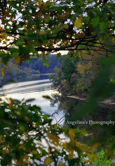 Coosa River by Angelina's Photography https://www.facebook.com/angelinasphotographyal
