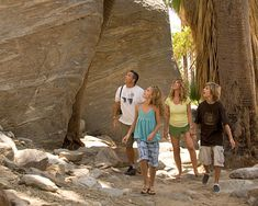 Indian Canyons, Palm Springs, California