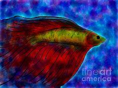 Fine Art Digital by Anita Lewis - FIGHTING FISH II - Siamese fighting fish digital created on an ipad