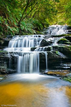 Leura Cascades, one of the most beautiful corners around the Blue Mountains (near Sydney, Australia)