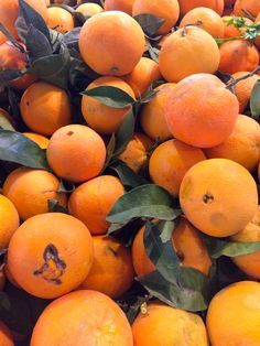 Oranges, Taronjes, Naranjas - Seasonal Citrus Recipes & Barcelona | One tomato, two tomato