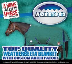 A Home For Every Horse's Featured Rescue of the Week is Pure Thoughts Horse Rescue Offical Page! Pure Thoughts Inc will be receiving 1 blanket from WeatherBeeta North America! http://www.equine.com/Services/ad_details.aspx?lid=2845318_source=AHFEH_facebook_medium=AHFEH_wallpost_campaign=AHFEH_Facebook