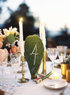 Decoración de boda: cactus