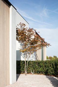 Private Garden, Garden Trees, Garden Inspiration, Garden Landscaping, Building A House, Concrete, New Homes, Patio, Landscape
