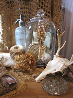 Deer skull, cloche, spritzer ... a strange combination that made me happy ... :)
