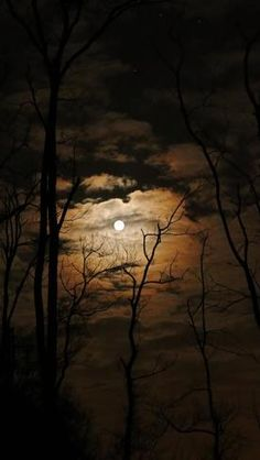 Night landscape photography beautiful sunset New Ideas Night Photography, Landscape Photography, Nature Photography, Moonlight Photography, Photography Lighting, Mobile Photography, Photography Tips, Mystery Stories, Spooky Stories