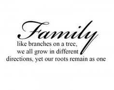 """Like branches on a tree we grow in different directions, yet our roots remain as one. Each of our lives will always be a special part of the other.""   #family #quote"