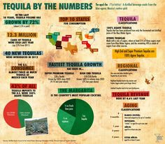 Tequila Facts for Cinco de Mayo Infographic
