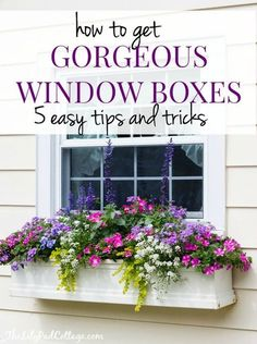 Gorgeous Window box tips from The Lilypad Cottage: